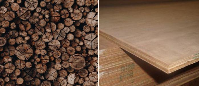 Wood furniture or plywood - Confused?